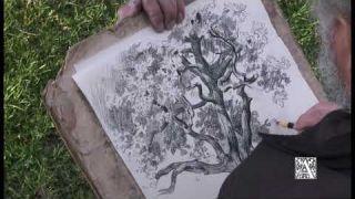 Андрияка С. Н. Акварельный пейзаж. Часть 1. Рисунок деревьев 3
